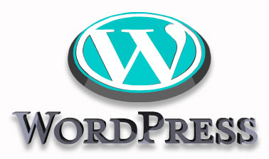 Why Should You Use WordPress Hosting For Your Website