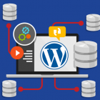 How to Install Multiple WordPress Blogs in a Single Database