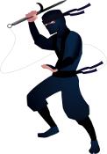 Domain .ninja